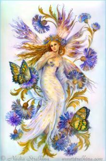 Васильковая фея