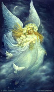 Ангел ночи