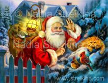 Cat and Santa